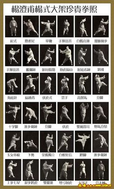 Google Image Result for http://www.kungfu-fans.com/wp-content/uploads/2009/05/what-is-chinese-tai-chi-chuan.jpg
