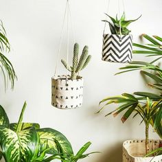 Cotton Canvas plant hanger cabana triangle pattern black and