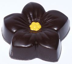 Chocolats du CaliBressan's Mother's Day chocolate is a dark and milk chocolate ganache with Hibiscus extract in a dark shell! Going to have to try this one! Milk Chocolate Ganache, Chocolate Gift Boxes, Chocolate Heaven, Mothers Day Chocolates, Food Shows, Food Items, Hibiscus, Caramel, Good Food