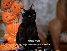 Oh Salem! Sabrina the Teenage Witch