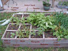 10 STRANGE VEGETABLE GROWING METHODS THAT ACTUALLY WORK - http://www.gardenpicsandtips.com/10-strange-vegetable-growing-methods-that-actually-work/