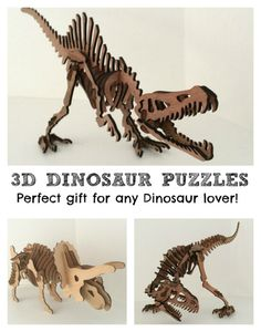 3D Dinosaur puzzles! Such a great gift idea!