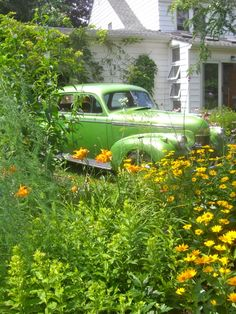 A green car in a Buffalo NY garden. The bright green and yellow combination energizes me and makes me HAPPY! Yellow Cottage, Boarding House, Sale Poster, Tropical Garden, Country Farmhouse, Love Flowers, Bright Green, Garden Art, This Is Us