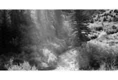 Mountain Wonders by Gerald Ratto - Pigment print on archival rag paper titled Mountain Wonders by Gerald Ratto, 2008.