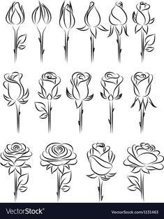 Doodle - Verzierungen Lettering Rose drawing - doodle Ornamental Fountain Article Body: The word 'Fo Art Doodle, Doodle Drawings, Easy Drawings, Tattoo Drawings, Tattoo Sketches, How To Make Drawing, Drawing Tips, Drawing Sketches, How To Draw Roses