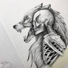 Pen and ink drawings by Alfred Basha // sketchbook drawings Animal Skull Drawing, Animal Skulls, Animal Drawings, Wolf Drawings, Sketchbook Drawings, Ink Pen Drawings, Skull Drawings, Tattoo Sketches, Wolf Tattoos