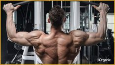 Workouts for all different parts of the body and their function in building muscle strength. The article lists the best exercise for a specific muscle group. Good Back Workouts, Back Exercises, Fun Workouts, Muscle Gain Workout, Biceps Workout, Muscle Mass, Gain Muscle, Bodybuilder, Lat Pulldown Machine