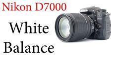 Nikon D7000: How to use Auto and Custom White Balance