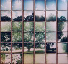 Полароидная мозаика · Lomography