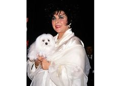 Elizabeth Taylor with Sugar at the Metropolitan Club in New York City to promote her Fragrant Jewel Collection, September 20, 1993.