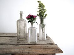 Antique Glass Bottle Collection Three Small by SnapshotVintage