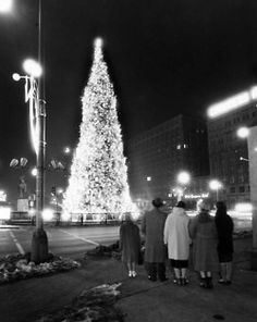 Admiring Chicago's Christmas tree at Congress and Michigan, January 1, 1960. iChi-i59382. #chicago #history #holidays #christmas