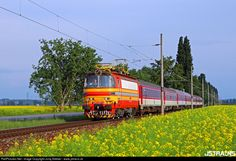 RailPictures.Net Photo: 240.037 ZSSK 240 SKODA at Levice, Slovakia by Juraj Streber - www.jstrains.sk Bahn, Locomotive, Life, Trains
