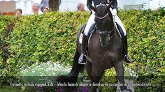 Cervantès, écrivain espagnol, a dit « Selon la façon de monter à cheval on est un cavalier ou un garçon d'écurie ».