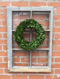 "This 12"" Boxwood wreath adds the much needed greenery to make your space come alive. Add on top of a window frame, old shutter, or as a table centerpiece. This wreath is made from real boxwood leaves"