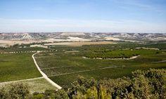 Abadía Retuerta   Duero Valley Winery   Wine Regions of Spain