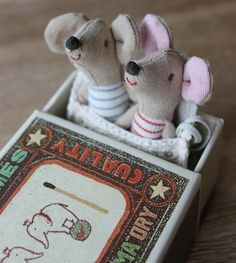 Newborn cotton mouse twins in a retro matchbox.