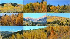 Glorious Autumn in Colorado!