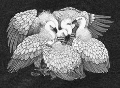Griffon vultures, black pen on paper 42 x 59.4
