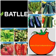 Algunas ideas de #cultivos para #sembrar en marzo en tu #huertourbano #calendario de #siembra