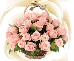 Happy Birthday Good Wishes, Birthday Greetings, Flowers Gif, Beautiful Flowers, Couleur Rose Pastel, Fireworks Cake, Corporate Flowers, Coming Up Roses, Good Morning Flowers