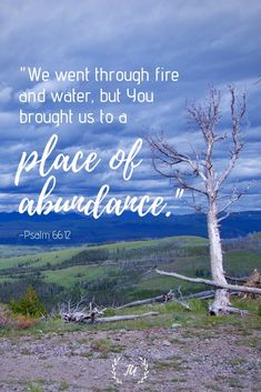 Even when we go through fire and water, we can rest in the truth that God is bringing us to a place of abundance. Read more encouraging Bible verses! Encouraging Bible Verses, Bible Encouragement, Scripture Verses, Bible Verses Quotes, Bible Scriptures, Faith Quotes, Healing Scriptures, Heart Quotes, Wisdom Bible