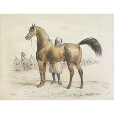 Victor Adam: Arab horse and African Groom