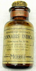 A Brief History And Outlook Of Cannabis Extract Medicine ~ RiseEarth