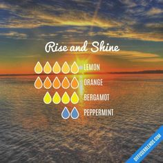 Rise and Shine Essential Oil diffuser blend Lemon, orange, bergamot, peppermint Essential Oils For Babies, Essential Oil Diffuser Blends, Doterra Essential Oils, Doterra Diffuser, Yl Oils, Young Living, Essential Oil Combinations, Savon Soap, Aromatherapy Recipes