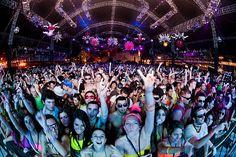 Ultra Music Festival!