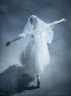 Giselle, act III Mikhailovsky  by Nikolay Krusser