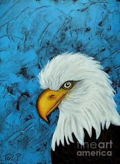 Sacred Bald Eagle by Claudia Tuli Canvas Painting Projects, Canvas Art, Canvas Ideas, Native American Paintings, Native American Art, Easy Paintings, Animal Paintings, Pictures To Paint, Art Pictures
