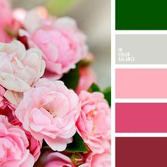 малиновый, оливковый, серо-лиловый, серый, серый с оттенком фиолетового, страстный розовый, тёмно-зелёный, тёмно-розовый, теплый розовый, цвет зелени, цвет листьев, цвет маджента, цвет малинового мороженного, цвет розового леденца, чериз пинк.