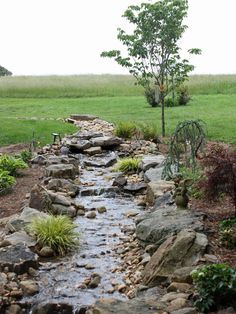 Dry Creek Bed Design, Pictures, Remodel, Decor and Ideas - page 2