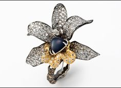 Cindy Chao - Four Seasons Sapphire Ring