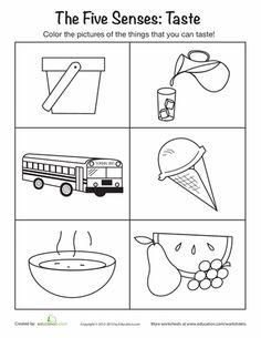 Arab Unity School   Grade 1 C   Blog: Science - 5 Senses Worksheets ...