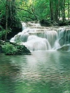 Animated Nature Screen Saver Wall by Wapking. Beautiful Nature Pictures, Beautiful Gif, Nature Photos, Beautiful Landscapes, Beautiful Places, Forest Waterfall, Waterfall Photo, Waterfall Fountain, Scenery Pictures