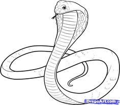 Snake Pencil Sketch at PaintingValleycom Explore collection of snake drawing - Drawing Tips Snake Sketch, Snake Drawing, Snake Art, Snake Painting, Pebble Painting, Snake Coloring Pages, King Cobra Snake, Colorful Snakes, Initial Art