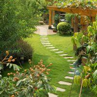 Garden design tips.  Love the path.