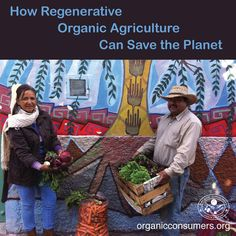 Did you know? Regenerative organic agriculture can save the planet! Learn how: http://orgcns.org/1GkkqLE   Want to learn more about regenerative agriculture's potential to reverse climate change? Check out these resources: http://orgcns.org/14DlrxK
