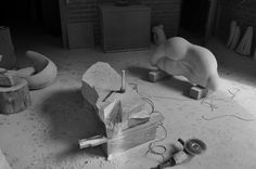 Studio - Leopoldino de Abreu