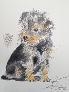 Chicken Scratch Yorkshire Terrier Yorkie Ink and by ValerinaLomax, $200.00