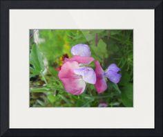 """Flower"" by Kirsti Harmaja, Helsinki // Kirsti Harmaja Art // Imagekind.com -- Buy stunning fine art prints, framed prints and canvas prints directly from independent working artists and photographers."