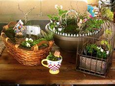 Four easy miniature gardens