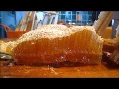 Honey Harvest - YouTube