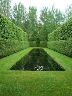garden pool Along the outer side of the cedars he planted little-leaf lindens to provide added height and seclusion Garden Hedges, Topiary Garden, Garden Pool, Water Garden, Shade Garden, Herb Garden, Vegetable Garden, Fenced Garden, Greek Garden
