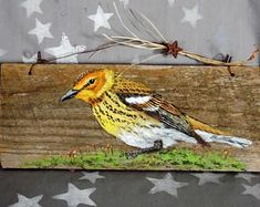 """Cape May Warbler, hand painted, authentic barn wood, rustic, 10 1/2"""" x 4 1/4"""