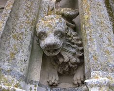 Lion creature, North Tower