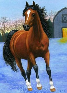 WINTER EVENING DANCER......this bay horse is feeling frisky in the chilly air of a winter evening.....PRINTED