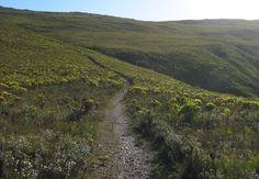 Dassieshoek Nature Reserve